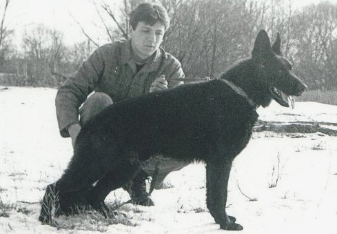 Z Pohranicni straze german shepherd dog
